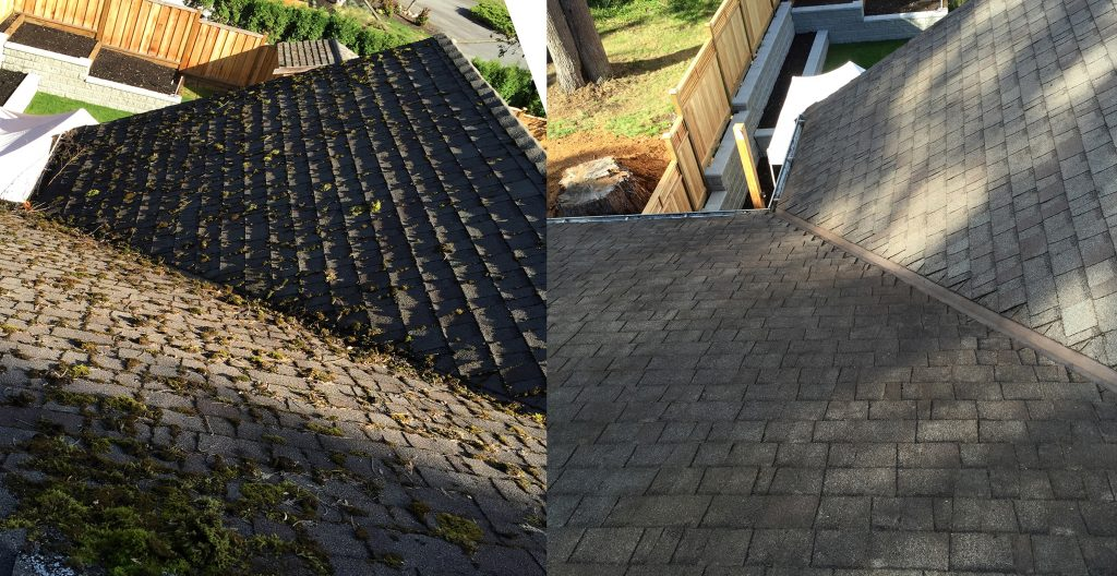 Services Capstone Gutter Cleaning
